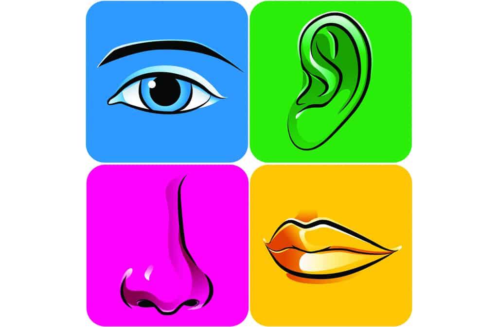 marketing sensoriel et expérientiel